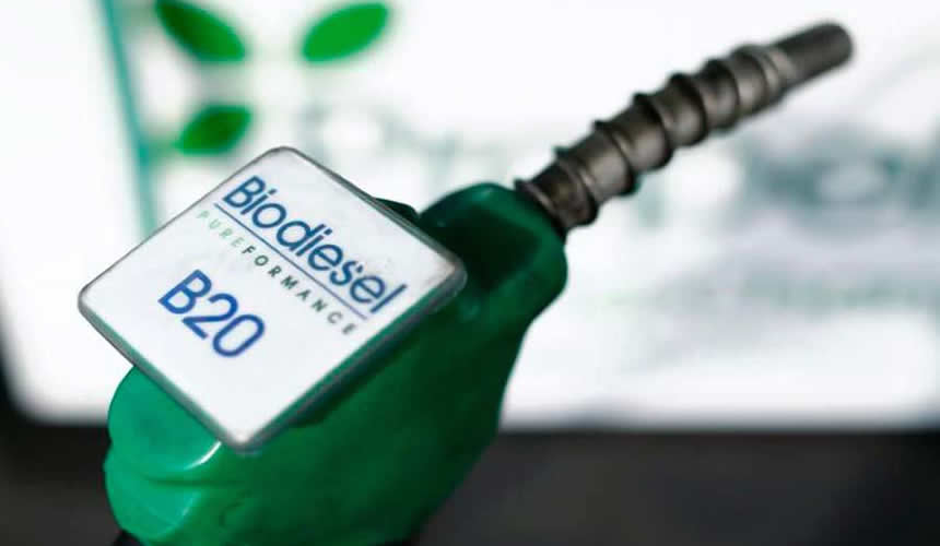 Pompe biodiesel B20