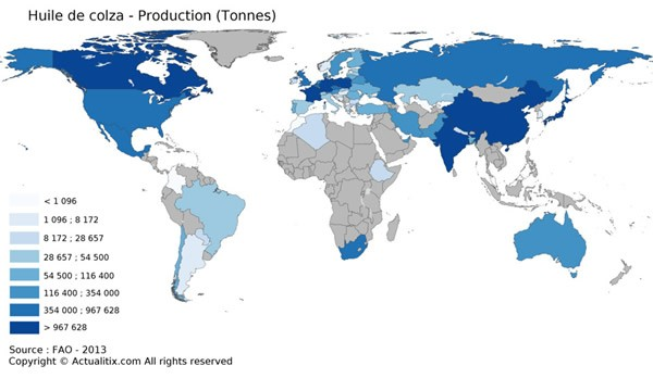 La carte du monde de la production d'huile de colza
