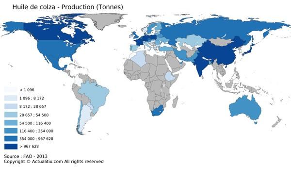 La carte du monde de la production d'huile de colza
