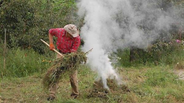Un exemple de feu de branchage en campagne