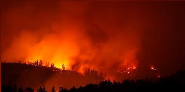 Le feu de forêt de Camp Fire en Californie a été très meurtrier en novembre 2018.