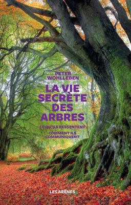 Le livre de Peter Wohlleben sur les arbres et les forêts