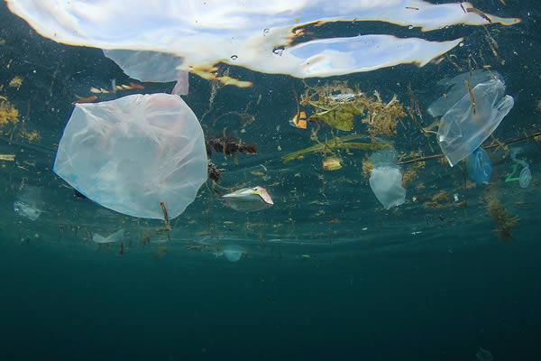 Pollution des océans par les plastiques