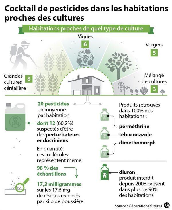 Schéma des pesticides présents dans les maisons